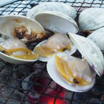 海の幸を釣り上げよう & BBQ体験